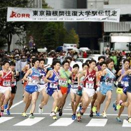 卒業後の選択肢不足も 箱根駅伝のスターはなぜ伸び悩む?