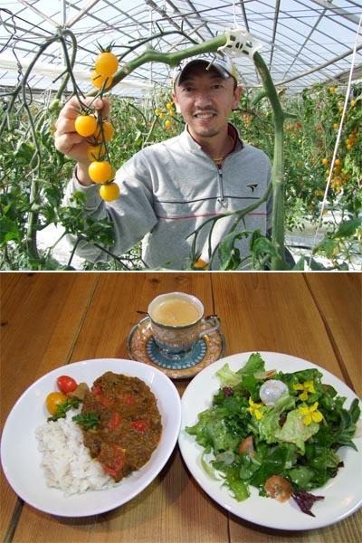 トマト農園(写真上)と季節のカレーセット/(提供写真)