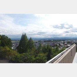 狭山丘陵の西側、圧倒的に緑が多い(C)日刊ゲンダイ