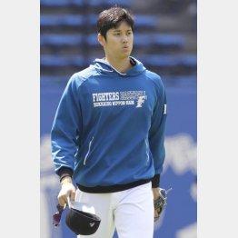 栗山監督は投手としての復帰も示唆しているが…(C)日刊ゲンダイ