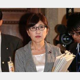 稲田防衛相は「わが国の主権に対する侵害」と憤ったが…(C)日刊ゲンダイ