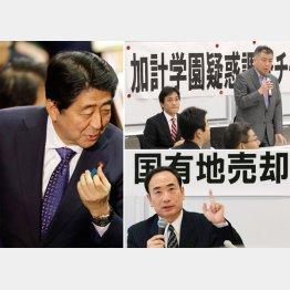 選挙で勝利し疑惑もチャラに?(C)日刊ゲンダイ
