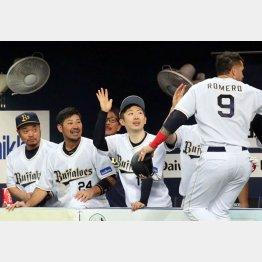 盛り上がるオリックスのベンチ(C)日刊ゲンダイ