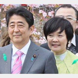 諸悪の根源(C)日刊ゲンダイ