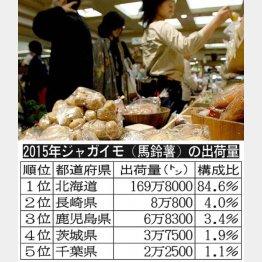 15年ジャガイモ(馬鈴薯)の出荷量(C)日刊ゲンダイ