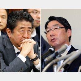 安倍首相(左)と文科省の前川前次官/(C)日刊ゲンダイ