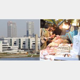 豊洲市場(左)と築地市場(C)日刊ゲンダイ