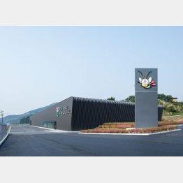 あつまるホールディングスの養蚕工場(提供写真)