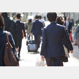 人材派遣がメーンビジネス(C)日刊ゲンダイ
