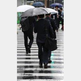 今年も梅雨がやってくる(C)日刊ゲンダイ