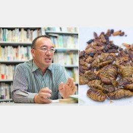 立教大学文学部の野中健一教授(右は昆虫食)/(C)日刊ゲンダイ