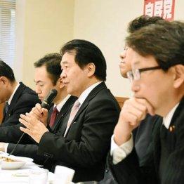 「ミスター特区」竹中平蔵氏が諮問会議議員の利益相反