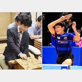 将棋の藤井聡太四段(左)と卓球の張本智和/(C)共同通信社