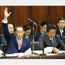 挙手をする金田法相(左)と安倍首相(C)日刊ゲンダイ