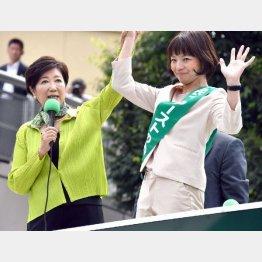 桐山ひとみ候補の応援に駆け付けた小池知事(C)日刊ゲンダイ