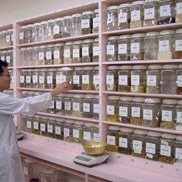 中医学の専門家に聞いた ベトベト汗と体臭を防ぐ漢方は?