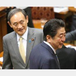 安倍首相(右)と菅官房長官/(C)日刊ゲンダイ