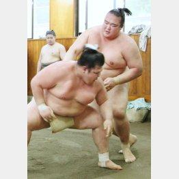 阿武松部屋で稽古を行う稀勢の里(右)/(C)共同通信社