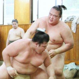 阿武松部屋で稽古を行う稀勢の里(右)