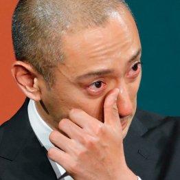 海老蔵の会見での「涙」は本音で真実で虚実を超えていた