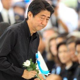 また安倍首相が出向き…沖縄「慰霊の日」で起こったこと