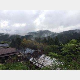 朝の吉野/(C)日刊ゲンダイ