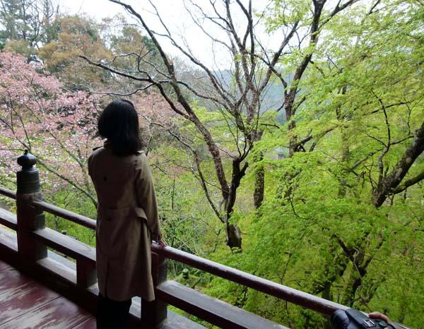 拝殿からの眺めも美しい(C)日刊ゲンダイ
