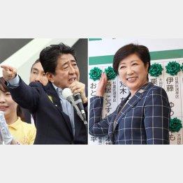 自民ワースト(左)と都民ファースト(C)日刊ゲンダイ