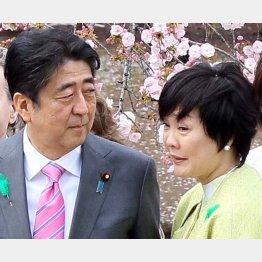 疑惑の中心にいる安倍首相夫妻(C)日刊ゲンダイ