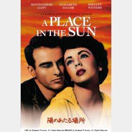 DVD「陽のあたる場所」 発売元・・NBCユニバーサル・エンターテイメント TM