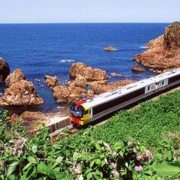 列車の顔がキツツキを表現 五能線「赤と黄が海に映える」