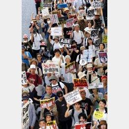 「やめろ」「うんざり」の嵐/(C)日刊ゲンダイ