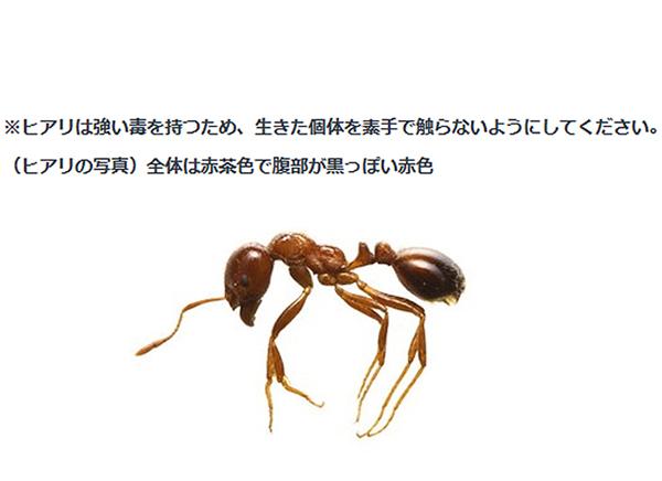 (環境省HPから)