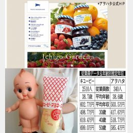 キューピーとアヲハタ(C)日刊ゲンダイ