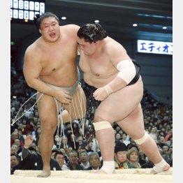 後輩の照ノ富士(右)には水をあけられたが…(C)共同通信社