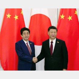 習主席(右)と安倍首相/(C)共同通信社