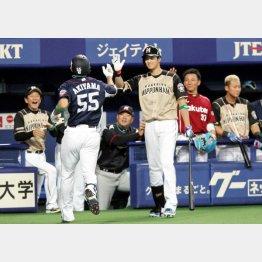 先頭アーチの西武・秋山を出迎える日本ハム大谷(C)日刊ゲンダイ