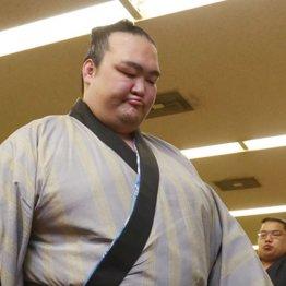 相撲協会は「休場力士ふれあいコーナー」を作るべし