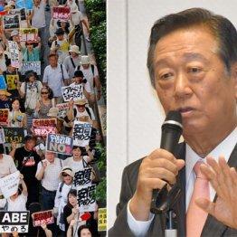 小沢一郎の指摘は正論 安倍政権は野党共闘ですぐ倒れる