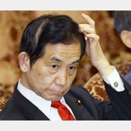 山本地方創生相は獣医師会文書に反論(C)日刊ゲンダイ