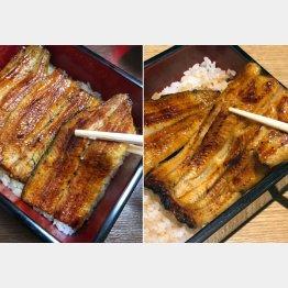 共水うなぎ(左)とうなぎ坂東太郎(右)/(C)提供写真