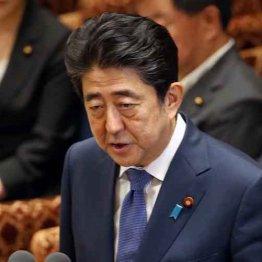東京に続き仙台でも 有権者が安倍内閣の政治私物化に鉄槌
