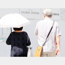 老人社会は進む...(C)日刊ゲンダイ