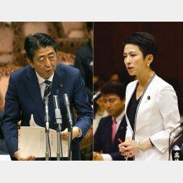 安倍首相と蓮舫代表(C)日刊ゲンダイ