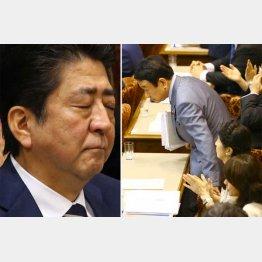 安倍首相(左)と自民党の青山参議院議員/(C)日刊ゲンダイ