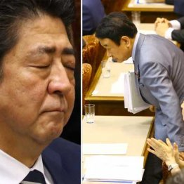 安倍首相(左)と自民党の青山参議院議員