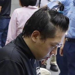 送検される佐藤容疑者