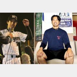 週3日はウエートトレーニングに励む(左写真は阪神タイガース時代)/(C)日刊ゲンダイ