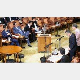 7月25日の参院予算委で安倍首相に質問する桜井議員(C)日刊ゲンダイ