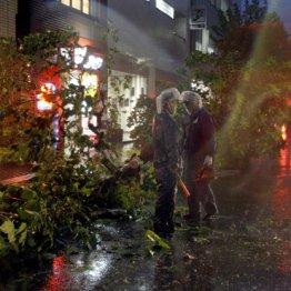 家とクルマを守る 豪雨に備える「損害保険」の賢い選び方